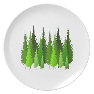EVERGREEN WAYS PLATE