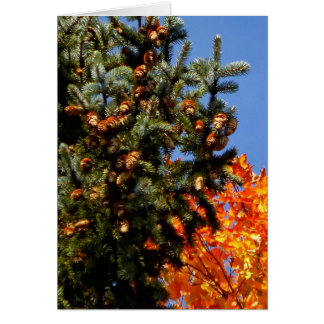 Evergreen with Pinecones Card