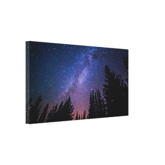 Evergreens Star Gazing Interstellar Art Canvas Print