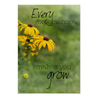 Every Experience Makes You Grow Poster