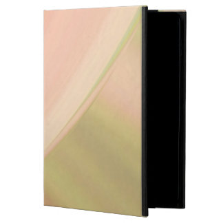 Every Which Way Peach iPad Air Cover