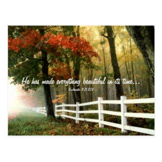 Everything Beautiful Verse Postcard