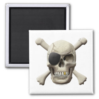 Evil Pirate Skull & Crossbones Magnet