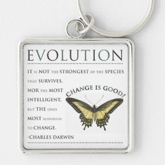 Evolution Change Key Chains