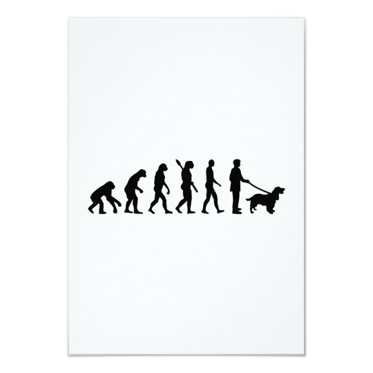 Evolution Cocker Spaniel Card