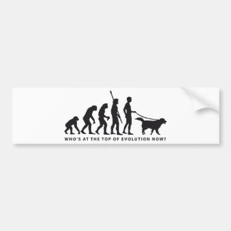 evolution dog bumper sticker
