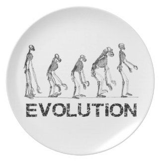 evolution of hymen plate