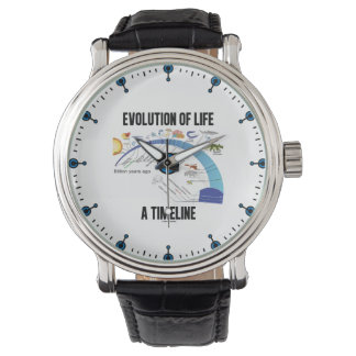 Evolution Of Life A Timeline Biology Wristwatches