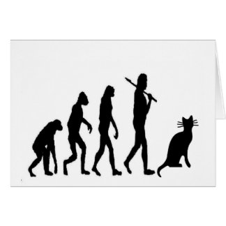 "Evoultion Cat ""We Believe""-Funny Cat Lovers Greeting Card"