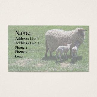 Ewe with Twins Business Card