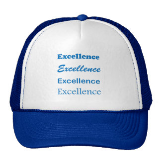 EXCELLENCE: Management Sports Engineering Cuisine Hats