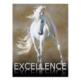 Excellence Postcard