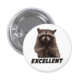Excellent Evil Plotting Raccoon 1 Inch Round Button