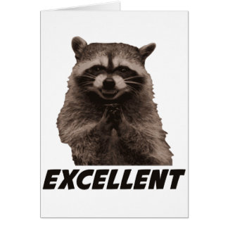 Excellent Evil Plotting Raccoon Card