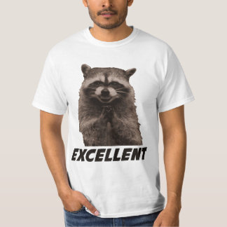 Excellent Evil Plotting Raccoon Shirts