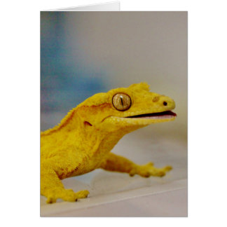 Excited Crested Gecko Card
