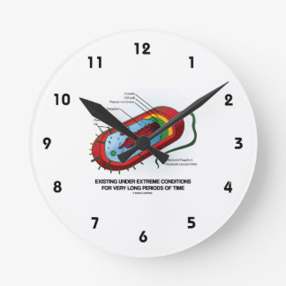 Existing Under Extreme Conditions Very Long Time Wallclock