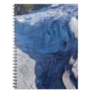 Exit Glacier Waves Notebook