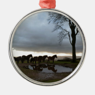 Exmoor Ponies Silver-Colored Round Ornament