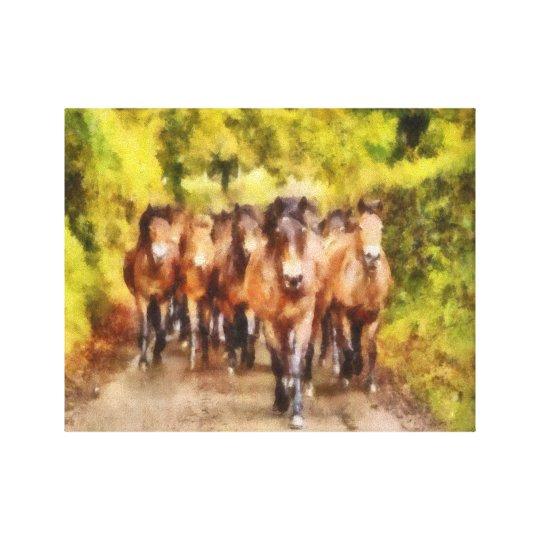 Exmoor Pony Drove Canvas Print