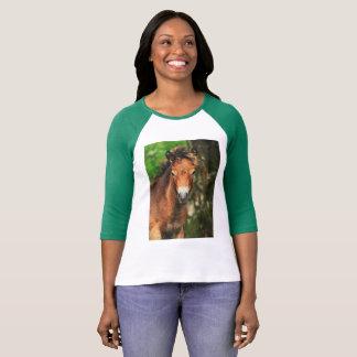 Exmoor Pony T-Shirt