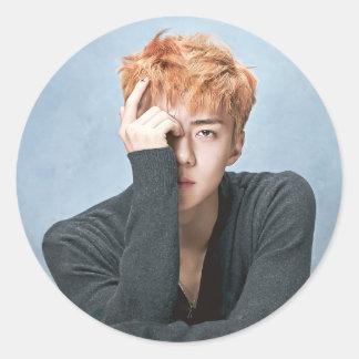 EXO Sehun Stickers