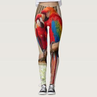Exotic bird leggings