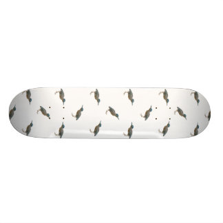 Exotic Birds Motif Pattern Skate Decks