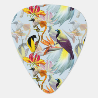 Exotic Birds of Paradise and Flowers Watercolor Guitar Pick