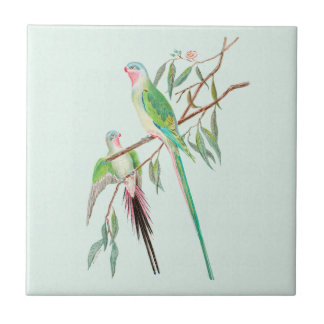Exotic Birds Pastel Watercolor Green Ceramic Tile