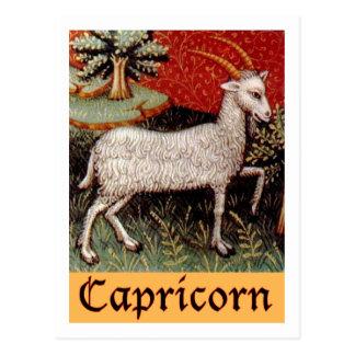 Exotic Capricorn Zodiac Sign Postcard