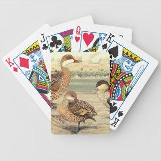 Exotic Duck Birds Wildlife Animal Playing Cards