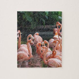 Exotic Flamingos Jigsaw Puzzle