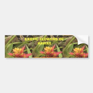 Exotic Flowers of Hawaii, Exotic Flowers of Haw... Bumper Sticker