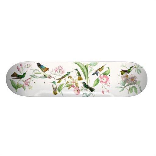 Exotic Hummingbirds Skateboard
