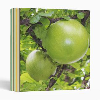 Exotic Maja fruits 3 Ring Binder