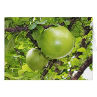 Exotic Maja fruits Greeting Card