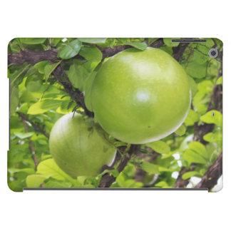 Exotic Maja fruits iPad Air Covers