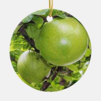 Exotic Maja fruits Round Ceramic Ornament