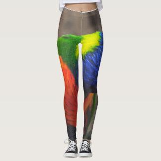 Exotic parrot leggings