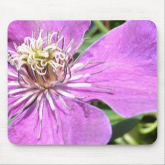 Exotic Purple Flower Mousepads