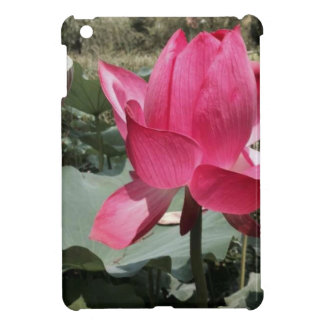 Exotic Red Flower iPad Mini Covers
