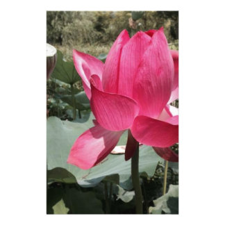 Exotic Red Flower Stationery Paper