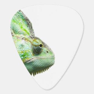 Exotic Reptile Guitar Pick