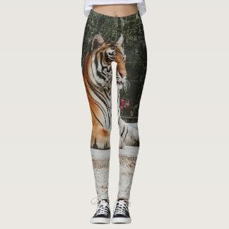 Exotic tiger leggings
