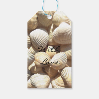 Exotic Tropical Sea Shells Summer Beach Theme Pack Of Gift Tags