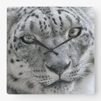 Exotic White Snow Leopard Square Wall Clock