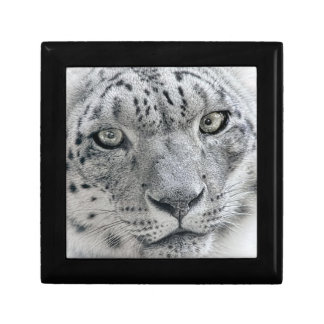 Exotic White Snow Leopard Keepsake Boxes