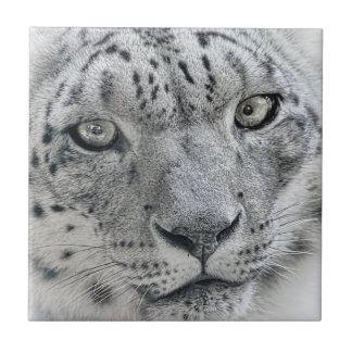 Exotic White Snow Leopard Ceramic Tile