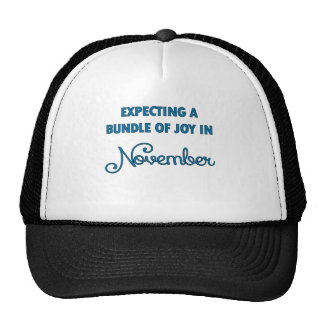 Expecting a bundle of joy in November blue.png Trucker Hat